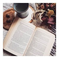 Snuggling up with a good book, lots of hot tea and Hedgehogs💜. We'd love to know, what are you up to as we practice social distancing? 😊#socialdistancing
